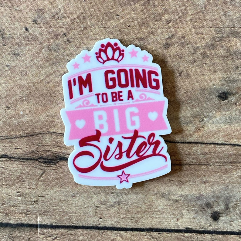 Set of 2 Going to Be a Big Sister resins