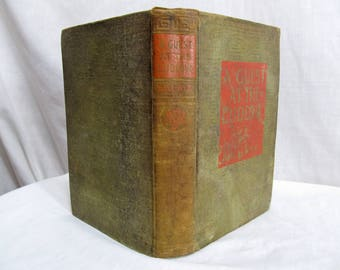 A Guest at the Ludlow, Edgar Wilson Nye (Bill Nye) The New York Book 1913 Hardcover Antique Book
