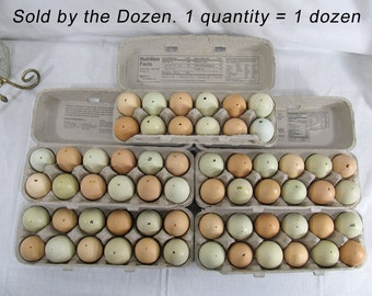 "1 Dozen Hollow Eggs for Craft Projects ""Easter Eggs"" Blue Green Tan Brown Ranch Eggs, Happy Chickens Chicken Eggs 12 Blown Out Hollow Eggs"