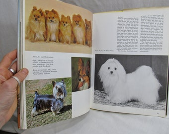 The Treasury of Dogs,  Wendy BOORER  Published by Octopus Books Ltd, London (1972) Full Color Illustrated Dogs Book
