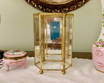 Glass Mirrored Display Box,  Brass Glass Footed Vertical Box, Hexagon Shaped Glass Box with HInged Door, Glass Terrarium, Small Bun
