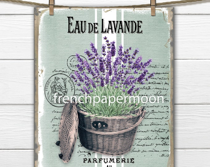 French Lavender Graphic, Lavender Basket, French Typography, Pillow Image, Fabric Transfer PNG JPEG Instant Download