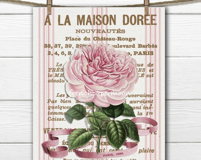 Antique Botanical Rose Print French Graphic Rose French Ticking Stripes Large Image Graphic Transfer