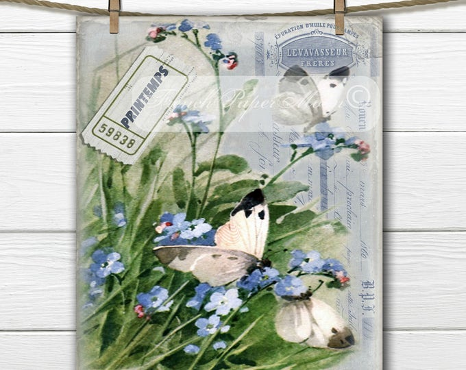 French Digital Shabby Spring Image, Vintage Butterflies, Forget-me-nots, French Typography, Printemps, French Pillow Graphic Download