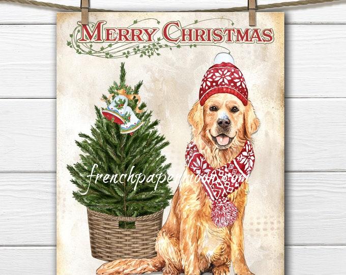 Golden Retriever Christmas Printable, Santa's Helper, Scarf, Snow, Hat, Xmas Pillow Image, Graphic Transfer, Transparent, Fabric Transfer