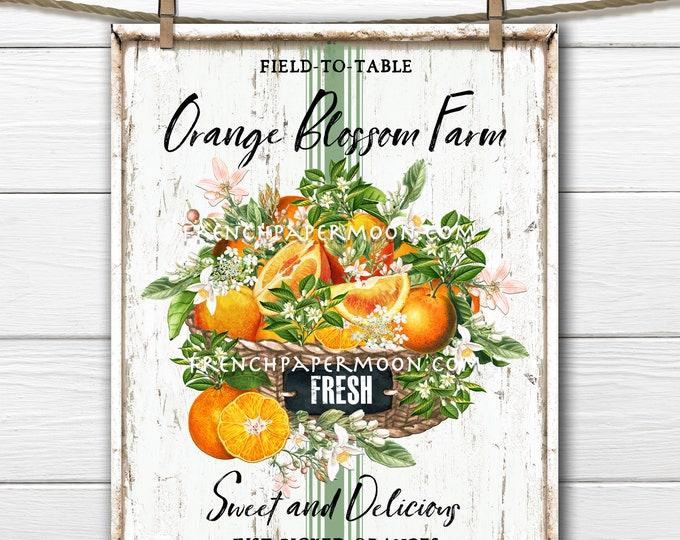 Farmhouse Summer Oranges, Orange Blossom, Fruit, Digital, DIY Oranges Sign, Fabric Transfer, Pillow Image, Wreath Decor, PNG, Tiered Tray