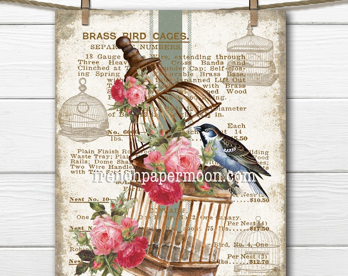 Vintage Bird Cage, Shabby Floral Brass Bird Cage, Roses, Bird, Advertising, Bird Pillow Image, Transparent, Bird-lover, Digital Graphic