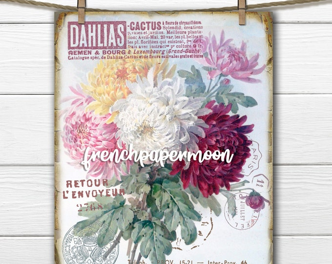 Vintage Shabby Dahlia Botanical, French Flower Bouquet, Printable Flower Graphic, Fabric Transfer, Instant Download Digital