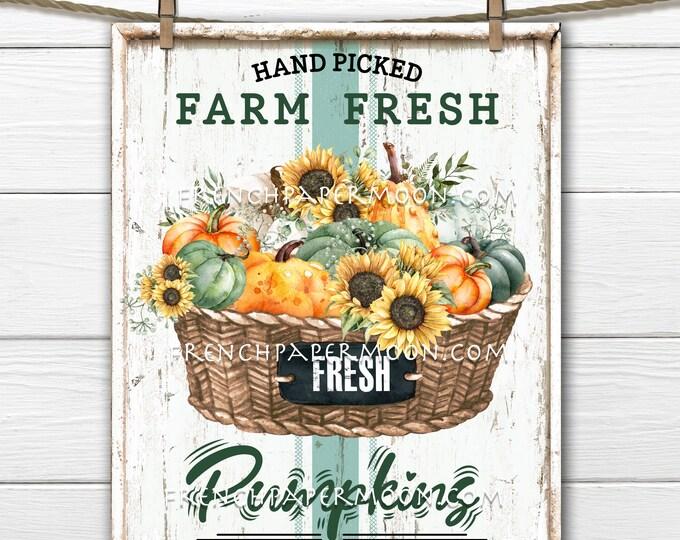 Pumpkin Basket, Farmhouse Pumpkins, Pumpkin Farm, DIY Pumpkin Farm, Wreath Accent, Digital Print, Fabric Transfer, Image Transfer