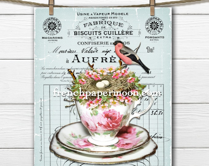 Shabby Spring Teacup, Bird Nest, Eggs, Pink Bird, French Graphic, Pillow Image, Spring Crafts, Rose Teacup Printable, Sublimation, Crafts