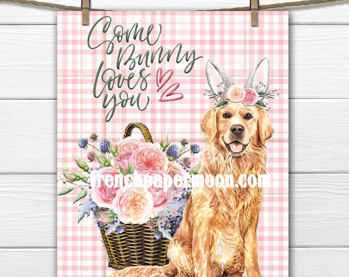 Somebunny loves you. Digital Print, Golden Retriever, Bunny Ears, Easter Pillow Image, Flowers, Dog Easter Graphic, Transparent, Sublimation