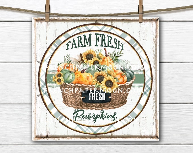 Farmhouse Pumpkin Basket, Circle, 8x8, Square, Sublimation Graphic, Digital, Wood, PNG, Door Hanger, Round, Iron-on transfer