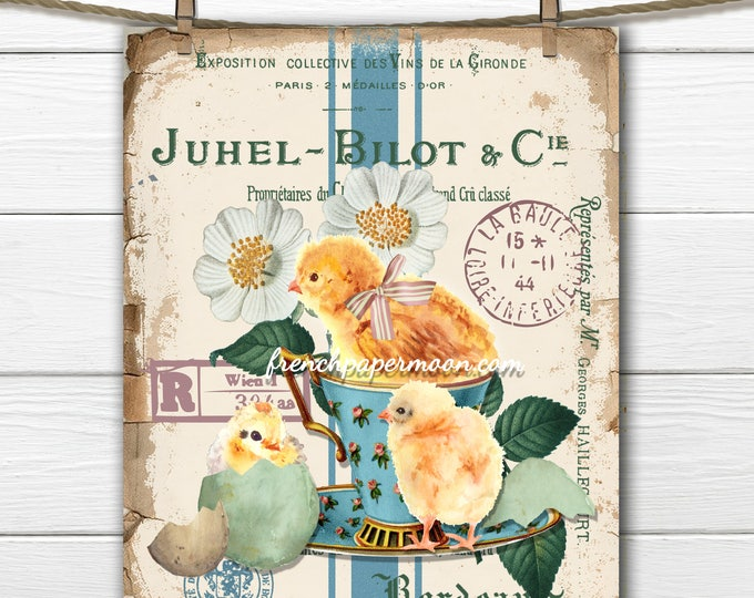 French digital Spring Chicks, Cup of Chicks, French Graphics, Daisies, Teacup, Pillow Image, Large Image Graphic Transfer, Crafts