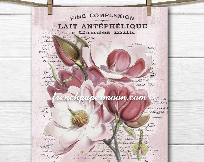 Romantic Pink Magnolia Printable French Botanical Digital Vintage Magnolia Graphic mage Transfer Pillow Image Home Decor, PNG, JPEG