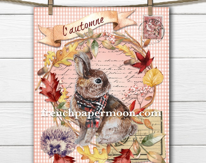 Printable French Autumn Bunny, Fall Wreath, Rabbit Hedgehog, French Graphics, Peach Gingham Pillow Image Transfer, Sublimation, Crafts