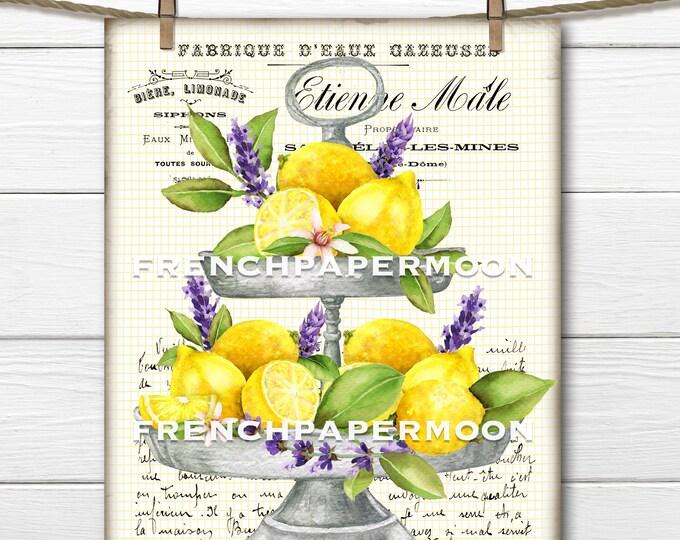French Lemon Lavender Graphic, Tiered Tray, Watercolor Lemons, Lavender, Farmhouse Kitchen Print, French Pillow, Sublimation, Transparent