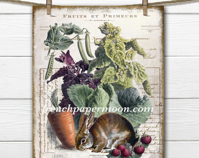 Digital French Vegetable Printable, Bunny, Rabbit, Pillow Image, Fabric Transfer, Antique Vegetables, Kitchen Print, Craft Supply