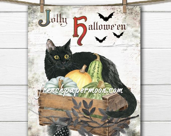 Black Cat Halloween Graphic, Fall Cat Printable, Autumn Harvest, Pumpkins, Bats, Pillow Image, Sublimation, JPEG PNG
