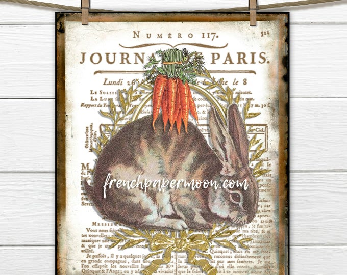 Vintage Bunny Rabbit Printable Digital, Farmhouse Bunny, French Script, Pillow Image, Fabric Transfer, Decoupage