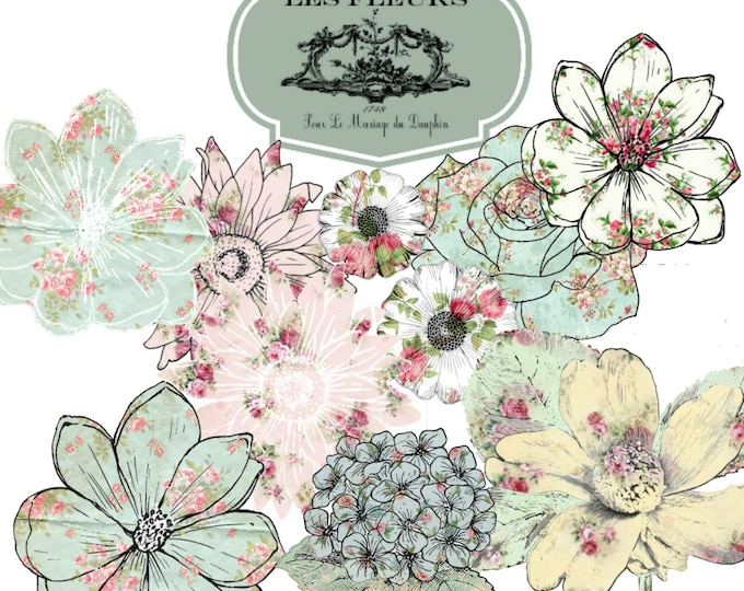 Digital Flowers, Wallpaper Flowers,  Scrapbook Supplies, PNG, Collage Sheet, Instant Digital Download
