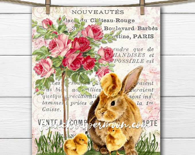 Easter Bunny Digital Print, Rabbit, Chicks, Roses, Easter Crafts, Springtime, French Pillow Image, Transparent, JPEG, PNG, Graphic Transfer
