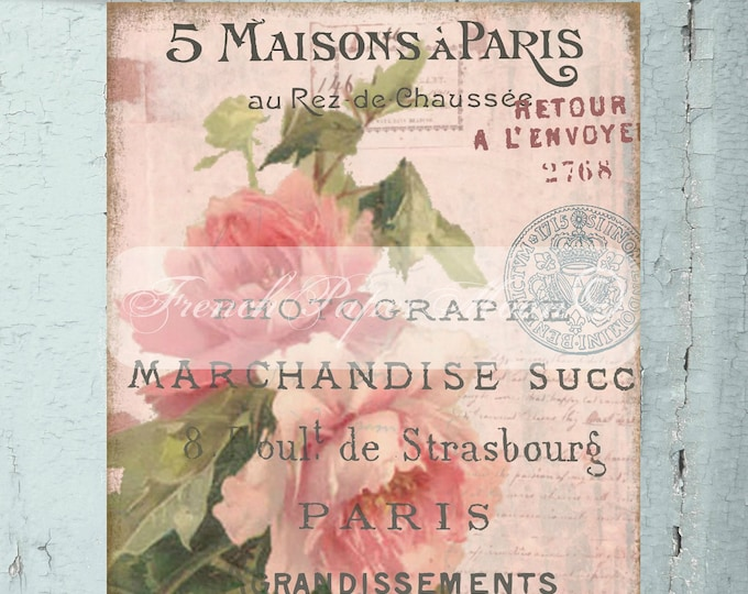 French Shabby Pink Digital Rose, French Typography, French Rose Pillow Transfer Graphic, Instant Download
