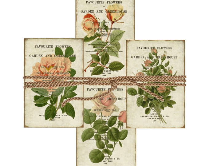 Shabby Digital Rose Tags, Vintage Rose Digital Cards, Digital Roses 4x6, Digital Collage Sheet