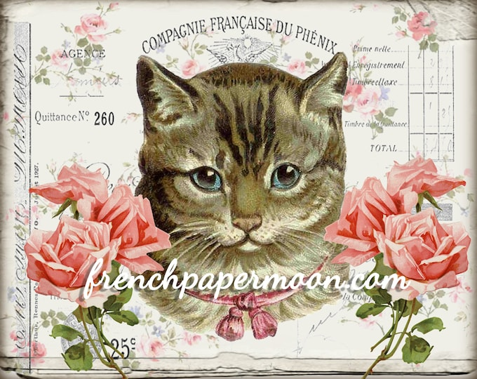 Shabby Digital Cat, Pink Roses, French Graphics, French Pillow Image, Instant Download, Large Image, Scrapbooking, Fabric