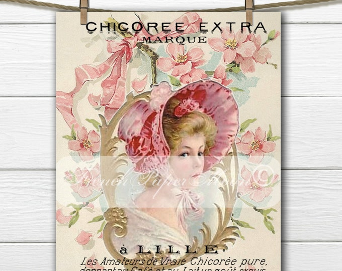 Shabby Digital Victorian Lady, Pink Ribbons and Roses, French Graphics, French Pillow Graphic Transfer Image