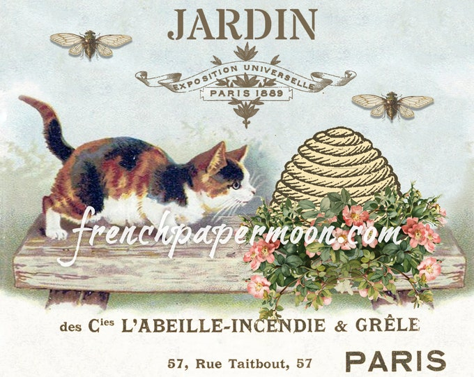 Shabby Vintage Kitten with French Bee Graphics, Vintage Spring Printable, Garden Roses, Instant Download, pillow image, crafts