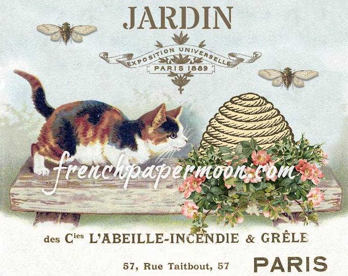 Vintage Kitten French Bee Graphics Shabby Spring Printable, Garden Roses, Instant Download, pillow image, crafts