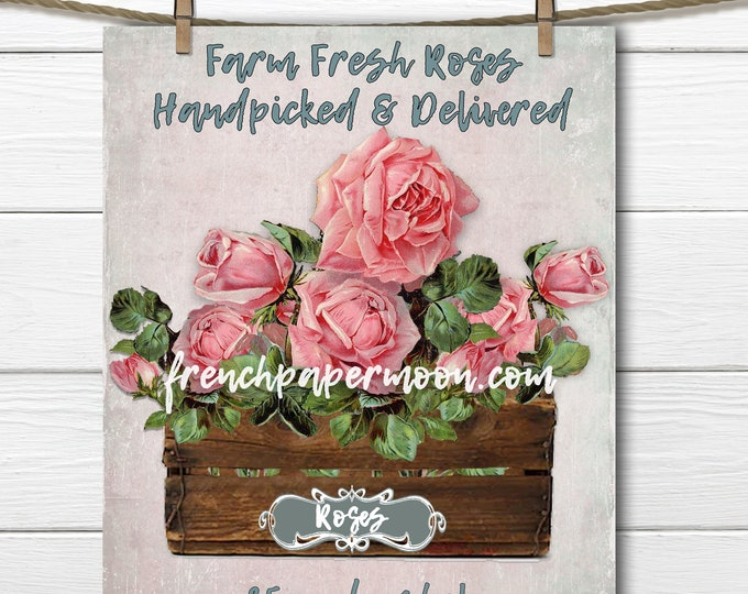 Farm Rose Graphic, Digital Image, Printable Roses, Crate of roses, Rustic Chic, Iron on Fabric, Image Transfer, PNG and JPEG