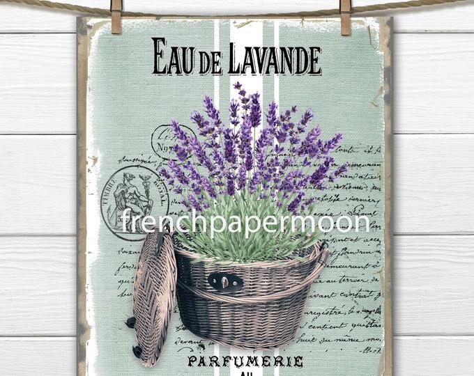 French Lavender, Digital, Farmhouse Lavender Basket, French Country Lavender, Lavender Home Decor, Image Transfer, Digital Download, PNG