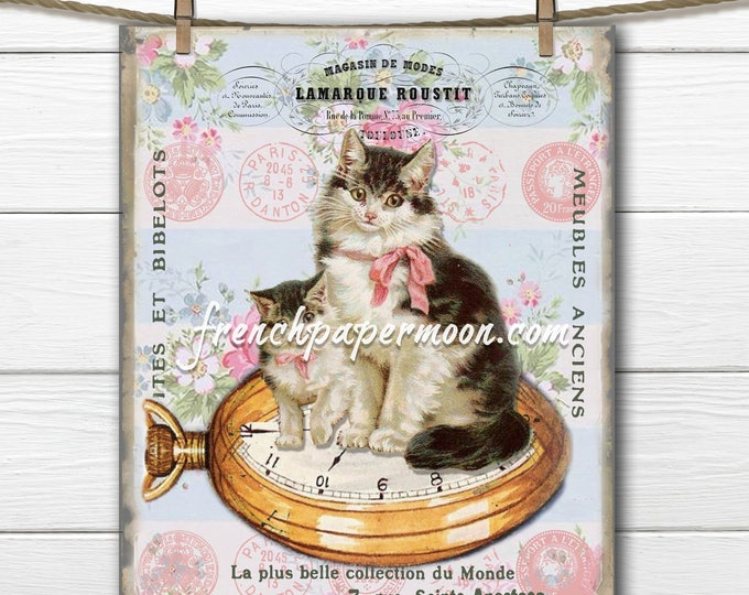 Shabby Digital Cats Antique French Cat Large Image Instant Digital Download Printable Antique Style Cat Graphic Transfer