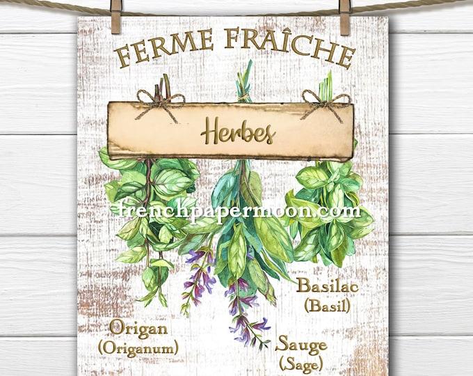 French Herbs Printable, Kitchen Herb Graphic, Farm-style, Basil, Oregano, Sage, French Pillow Image, Transparent, Sublimation, Kitchen Decor