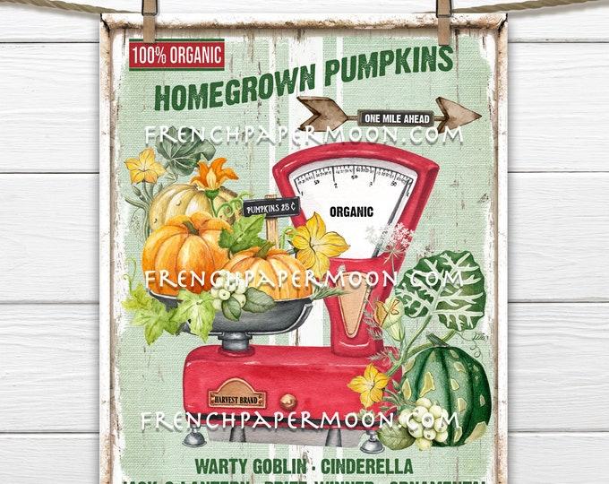 Farmhouse Pumpkins, Red Kitchen Scale, Homegrown, Organic Pumpkins, DIY Fall Sign, Home Decor Sign, Digital, PNG, Image Transfer