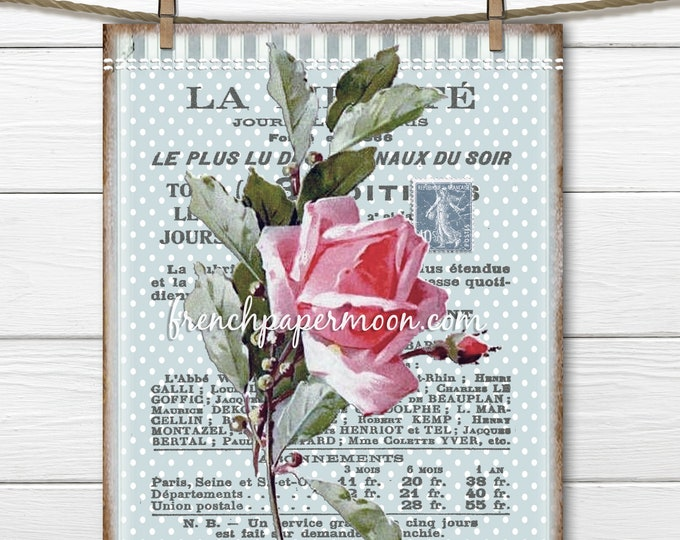 Shabby Pink Rose Digital, Victorian Rose, French Rose Graphic, Catherine Klein, French Pillow Image, Fabric Transfer, Rose Printable