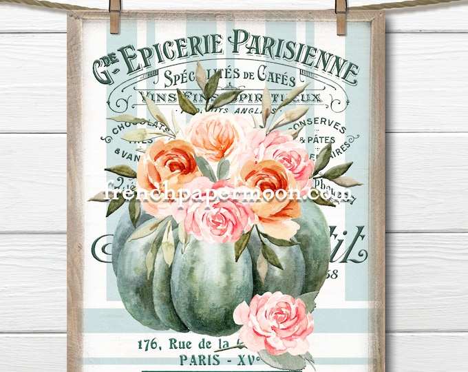 Shabby Pumpkins, Autumn Roses, Pumpkin Floral, Flowers, French Fabric Transfer, Sublimation, Large size Digital, Pumpkin Print, Transparent