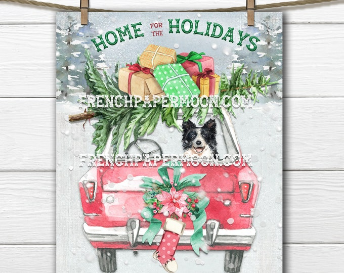 Christmas Dog Printable, Presents, Border Collie, Xmas Tree, Home for the Holidays, Snowy Scene, Fabric Transfer, Sublimation, Xmas Print