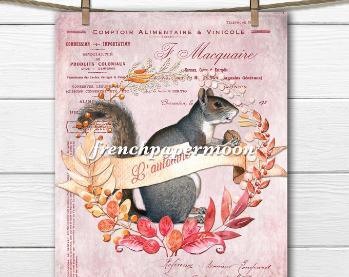 Digital Squirrel Printable, Shabby Autumn, Fall Graphic, Wreath, French Typography, Pink, Pillow Image, Sublimation, Crafts, JPEG PNG