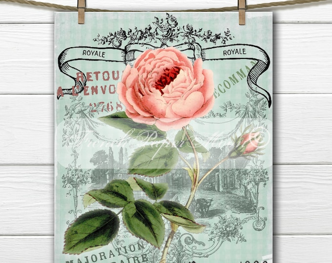 French Digital Rose, Shabby Chic Rose Download, French Rose Pillow Transfer Graphic, Iron On Fabric, Rose Transfer