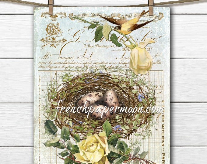 Bird Nest Printable, Shabby Roses, Vintage Bird, French Pillow Image, Spring Bird Graphic, Sublimation, Transparent, PNG, Crafts