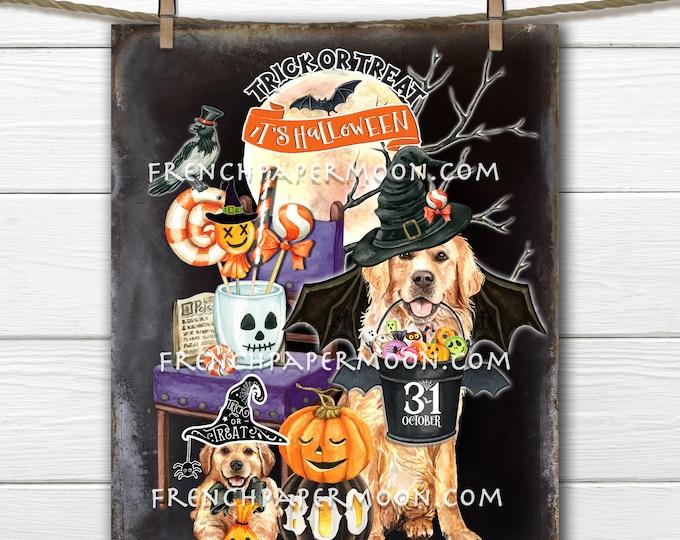 Halloween Golden Retriever, Trick or Treat, Halloween Candy, Digital, Halloween Pets, DIY Decor Sign, Fabric Transfer, Wreath Accent, PNG