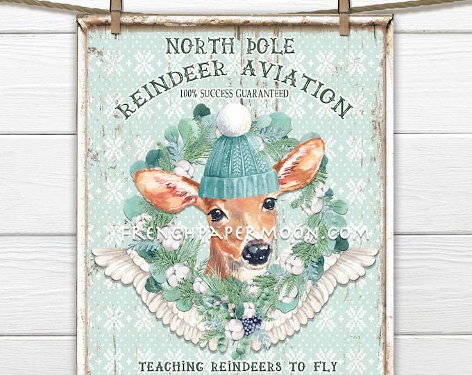 Cute Christmas reindeer Sign, Reindeer Aviation, Winter Deer, Hat, Winter Wreath, Mint-Green, Pillow Image, Wreath Decor, DIY Xmas Sign, png