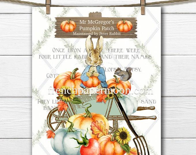 Shabby Beatrix Potter Fall Graphic, Peter Rabbit Pumpkin Patch, Autumn Peter Rabbit Pillow Image, Mr Mc Gregor, Digital Print, Kid Room