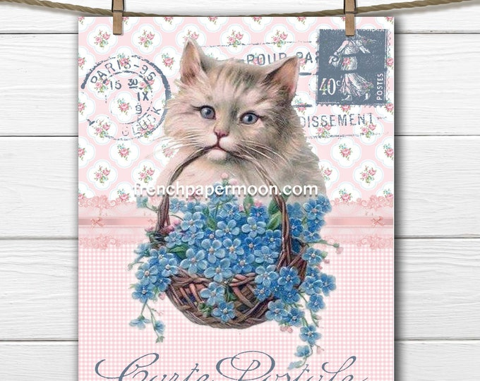 Vintage Shabby French Graphic Cat Printable, Forget-me-not, Valentine Cat Digital Download, Home Decor, Fabric Transfer, Craft Supply