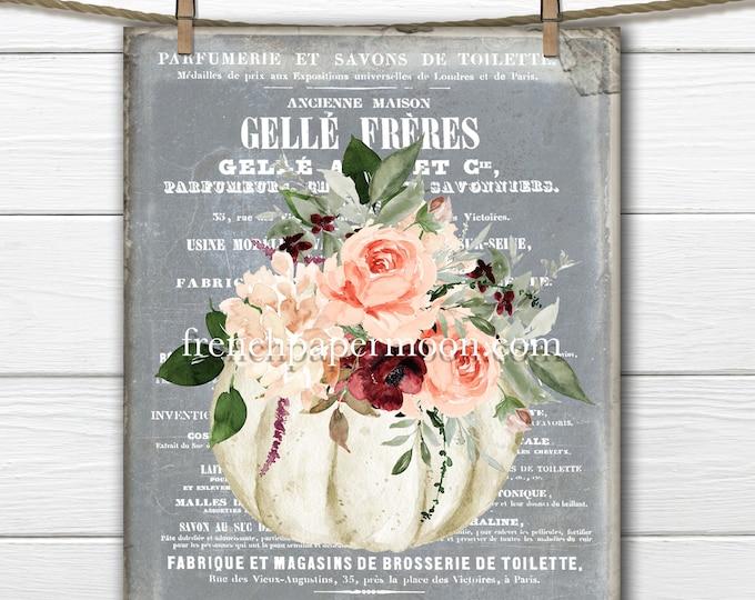 Shabby Pumpkin Roses, Pumpkin Bouquet, Digital, Floral, Peach, Burgundy, French Pumpkin Print, Home Decor, Fabric Transfer, Transparent