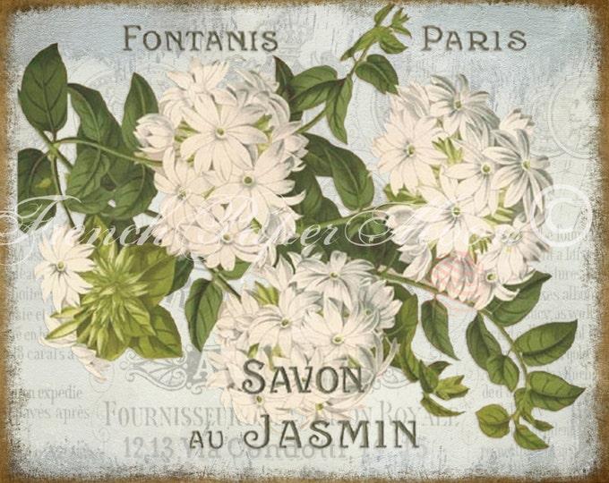 Vintage Digital Download, Shabby French Jasmine Botanical Print, Botanical Flower Download, Digital Jasmine, Savon Printable
