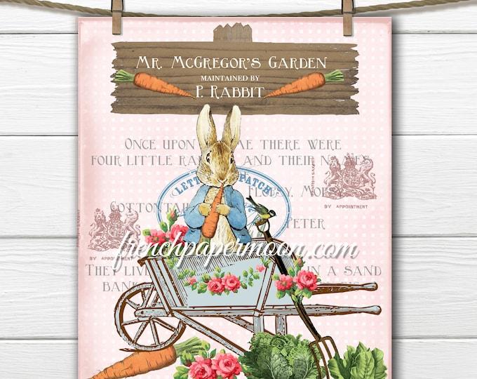Shabby Pink Peter Rabbit, Beatrix Potter Print, Mr. McGregor, Peter Rabbit Pillow Image, Nursery Decor, Fabric Transfer, Girl's Room