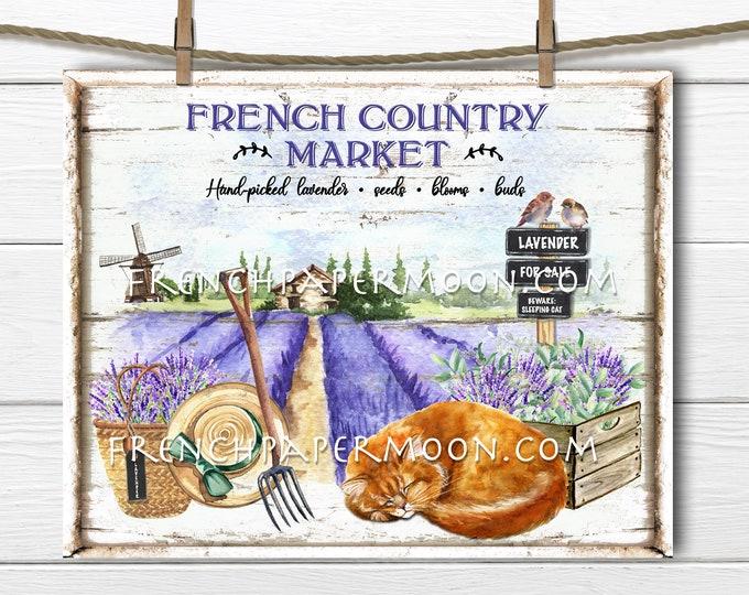 Lavender Farm, Digital, French Country Lavender, Lavender Market, Ginger Cat, Lavender for Sale, Pillow Image, Sublimation, DIY Sign